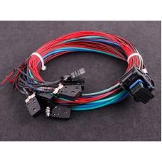 MaxxECU RACE cable harness 2